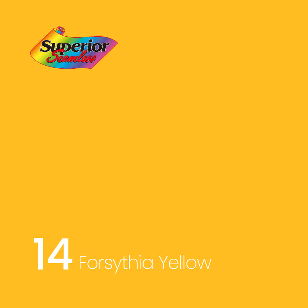 Superior 14 Forsythia Yellow